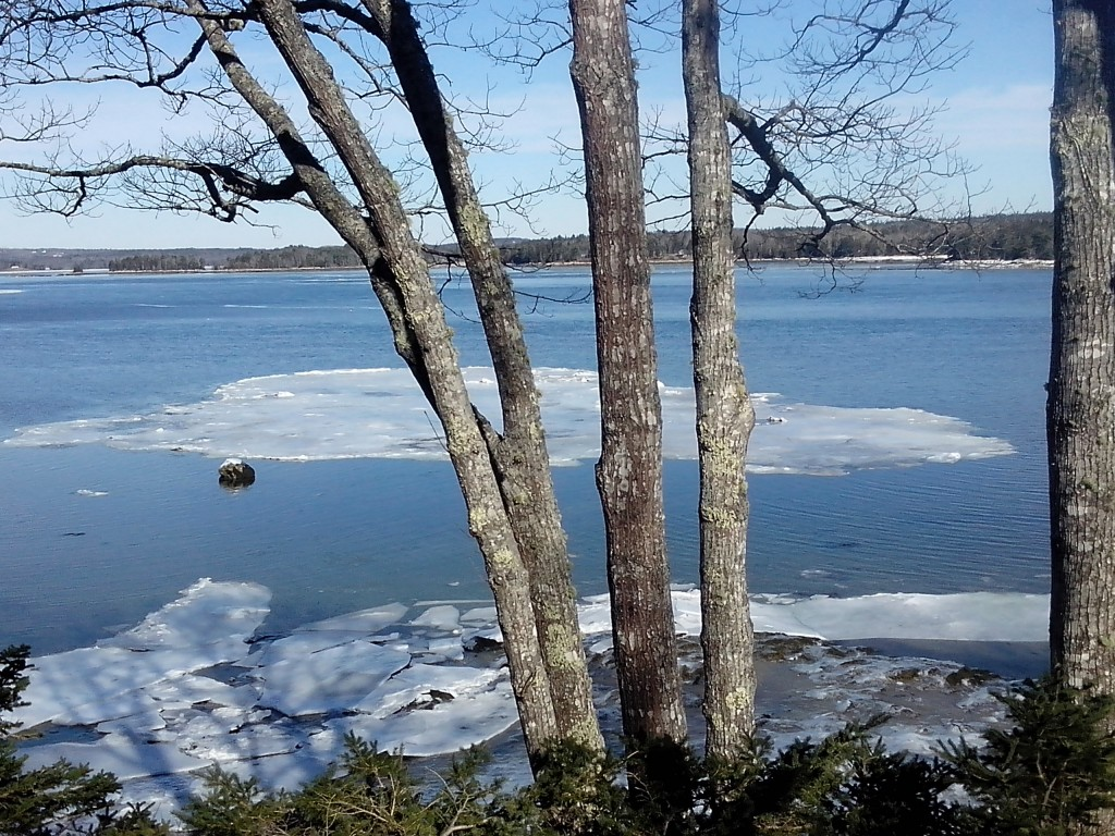 Ice floe on Taunton Bay
