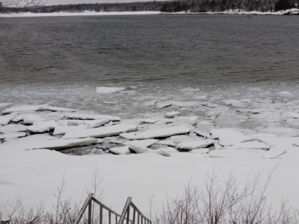 Ice breaking up along shore